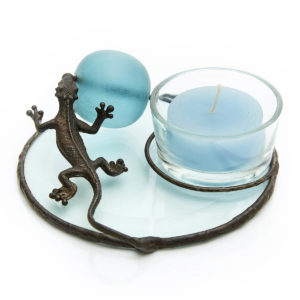 Dream Time Lizard Flying Lizard spinning the Blue Ball of Magical Dreams. Time to light the flames & dream big dreams.